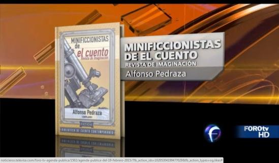 minificcionistas en foro tv